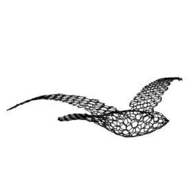 Y.239.02_uccello_in_rete_bird
