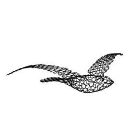 uccello in rete