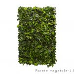Linfa decor Parete vegetale Edera Arborea