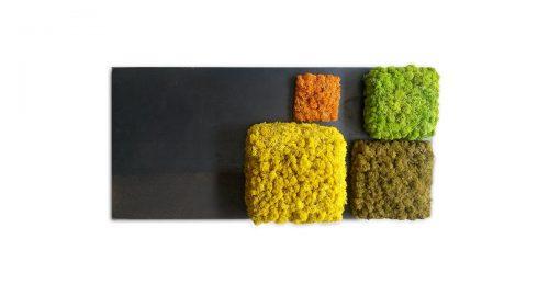 Linfa decor Quadro lichene Cubic